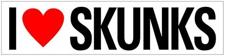 JS Artworks I Love Skunks Vinyl Sticker Decal product image