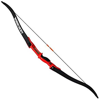 tactical bow and arrow