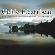 Bill Whelan, Sharon Shannon, Frances Black, Clannad, Liam O'Flynn..