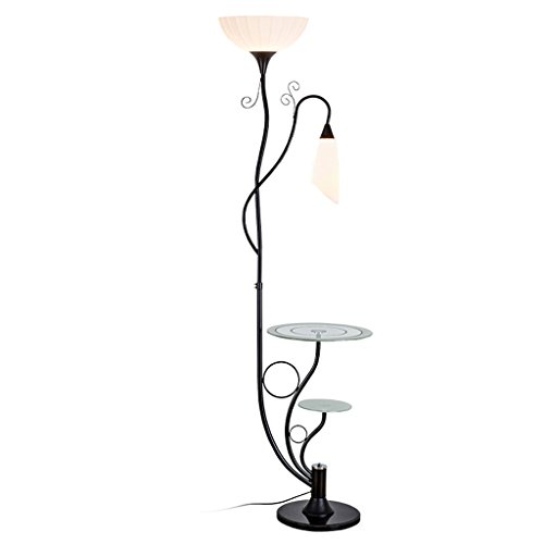 Terra Minimalistische staande lamp met staande lamp van ijzer verticaal koffieglas, lampenkap van hoogwaardig acryl voor woonkamer