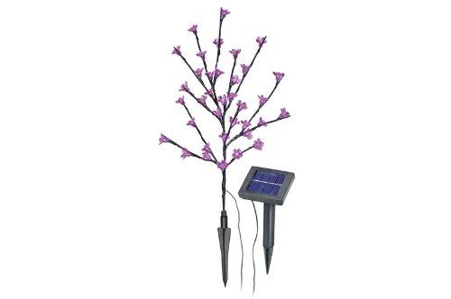 Esotec Bouquet de fleurs solaire à LED rose.
