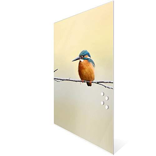 BANJADO Design Glas-Magnettafel 60x90cm groß | Magnetwand mit 4 Magneten | Memoboard beschreibbar | Magnetboard mit Motiv Pause