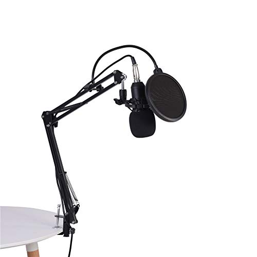 Studiomicrofoonkit, bekabelde condensator Karaokemicrofoon Opname Reverb Cardioïde microfoon met armstandaard en popfilter Schuimkap voor muziekinstrumenten, omroep, interviews