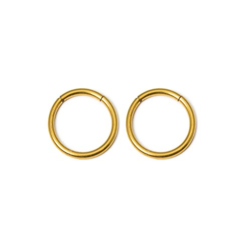 Sold in Pairs - 16ga-3/8(10mm) Seemless Segment Ring I.P. Coated 316L Surgical Steel Great for Nose, Ears, Septum, Eyebrow, Cartilage, Lip - 7 Colors to Choose From (Gold) by BodyJewelryOnline