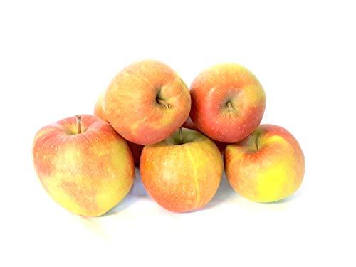 Äpfel Braeburn vom Bodensee süß-säuerlicher Apfel 1-10 KG Tafelapfel geeignet zum Backen und Kochen (1)