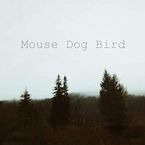 Mouse Dog Bird
