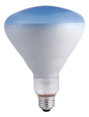 Philips LED Philips 415307 Agro Plant 120-Watt BR40 Food Light Bulb