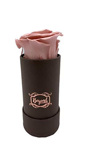 Original Beyond Flowerbox - Chocolate Kollektion mit 1 Infinity Rose in süssem Rosé