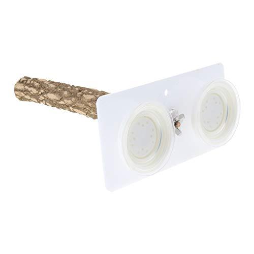 non-brand Sharplace Support De Perche pour Oiseaux Ventouse Portable Fenêtre Et Douche Jouet Perche S02 - S02