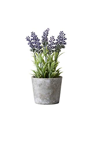 Serene Spaces Living Artificial Lavender in Cement Pot, Perfect for Weddings and Home Décor, Real Looking Plant for Decoration, Sold Individually, Measures 4in Diameter x 10in High Product Name