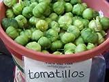 tomatillo, TOMA VERDE, para la salsa, 100 semillas! Groco