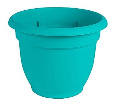 """Bloem Ariana Self Watering Planter, 6"""", Calypso (AP0627), 6-Inch"""