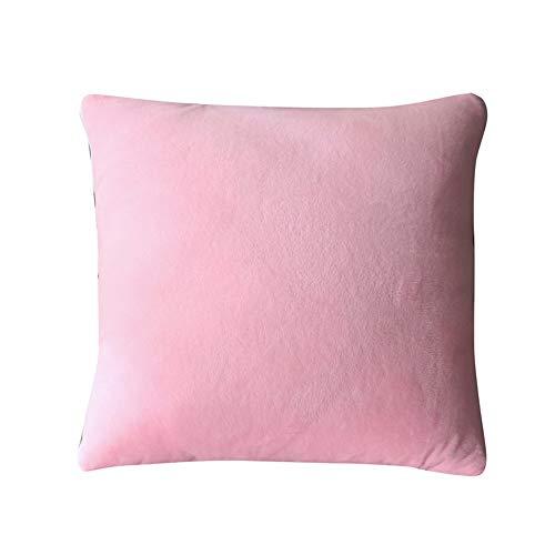 GOCF Manta de cojín Creativo Color Pure Color Cristal Velvet MANTANDO DE COLDA DE ALMACHA para EL Almuerzo para EL Sofa Y LA Oficina Cojín de Doble Uso para sofá Cama (Color : Pink, Size : 40x40cm)