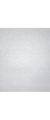 """LUXPaper 8.5"""" x 11"""" Paper for Crafts and Printing in Silver Metallic, Scrapbook and Office Supplies, 50 Pack (Silver)"""