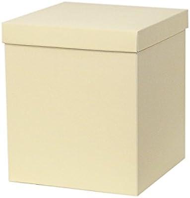 Dos Cajas Fondo Tapa 34,5 X 34,5 X 40 Cm: Amazon.es: Hogar