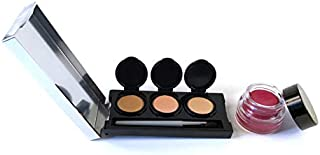 Tattoo Cover Up Makeup, Pro Makeup Artist Formula for Tattoos, Bruises, Non-Greasy, Waterproof, No Setting Powder. 4 colors + brush. By Dermaflage, 12.9g/.46oz (Medium)