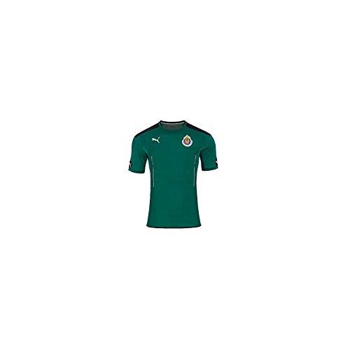 PUMA Chivas Goalkeeper SS Jersey Green Medium