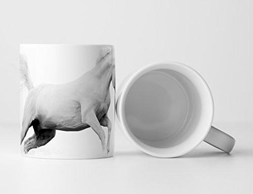 Eau Zone fotokunst mok geschenk dierfotografie - witte araberhengst bij mist