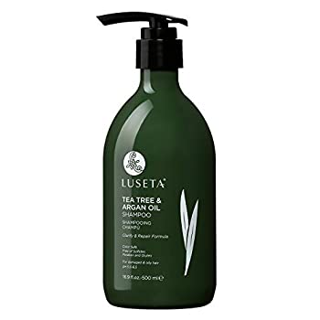 Luseta Tea Tree Shampoo with Argan Oil 16.9 Fl oz- Clarifying,Hydrating and Fighting Dandruff and Itchy Scalp - For Damaged and Oil Hair - Sulfate and Paraben Free for Men and Women