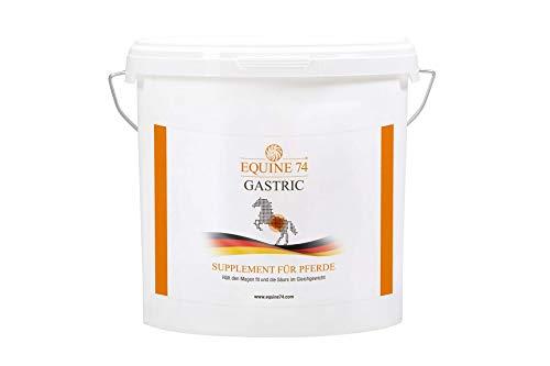 Equine 74 Gastric - Supplement für Pferde, Ponys mit Magenschleimhautreizung, Kolik oder Magengeschwür, puffert Magensäure (Pellets, 6kg)