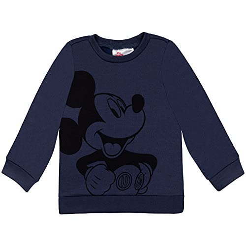 Disney Mickey Mouse Little Boys Fle…