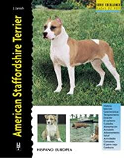 American Staffordshire Terrier (Excellence