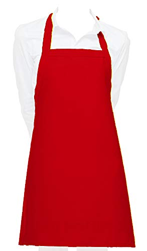 Cozy Home Glossy Smooth Vinyl Waterproof Apron Ultra Lightweight (1, Crayon Red)