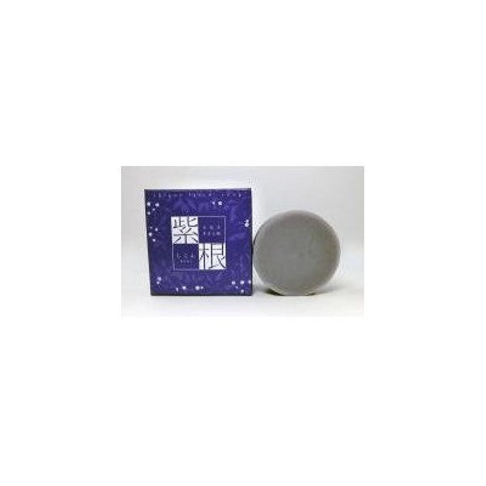 検査鎮静剤間違い紫根エキスをたっぷり配合した洗顔石鹸 紫根石鹸 100g×5個セット