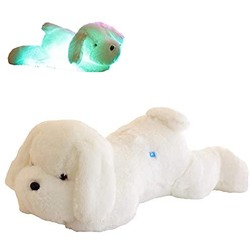 30cm Perro Peluche, 7 Cambio de Color LED Aclarar Juguete de Perro Relleno Almohada de Felpa Luz, Juguetes de Perro de Peluche Animal de Mar Relleno Muñecas Lindas para Niñas Niños, Blanco