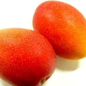 宮崎県産完熟マンゴー 2個入り (1個:230〜300g) 宮崎マンゴー最高等級品