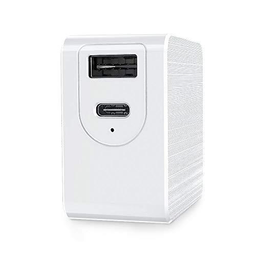 Telesin 65 W USB C Cargador con GaN Tech, 2 puertos PD cargador Type-C + USB-A cargador de pared compatible con Apple, Huawei, dell, Lenevo, Switch, DJI Mavic (65 W GaN)