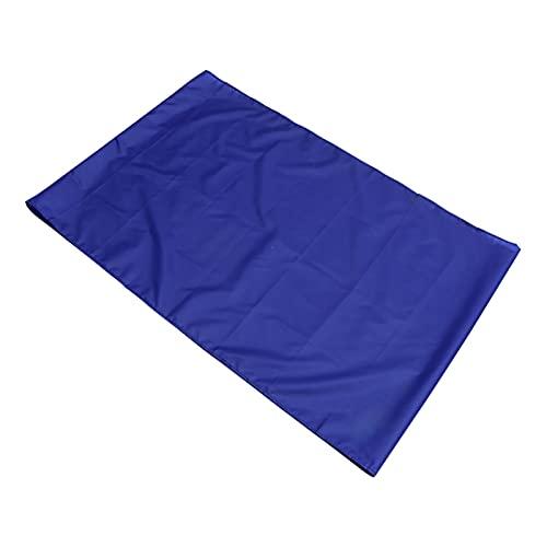 HEALLILY Hoja de Deslizamiento Hoja de Transferencia de Paciente Hoja de Deslizamiento para Vehículos Móviles de Ancianos Sillas de Ruedas Transferencias de Cama (Azul)