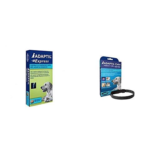 ADAPTIL Express Tabletten, 40 Stück, Ergänzungsfuttermittel zur Beruhigung & Calm Halsband, für mittelgroße-große Hunde, Halsumfang bis 62,5 cm