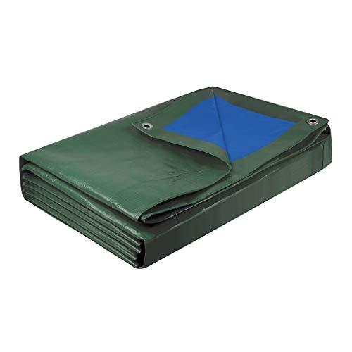 Cogex 082722 BACHE Lourde 5 X 8 5x8 mètres, Bleu/Vert