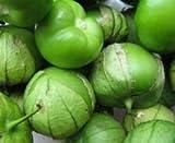Tomatillo Verde 100 Semillas Physalis Ixocarpa Verduras Frutas