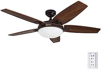 celing fan with light