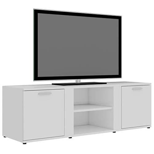 Goliraya Mobile Porta TV in Truciolato 120x34x37 cm Armadio Moderno con 2 Ripiani e 2 Ante Supporto TV Porta TV Moderno per Soggiorno Salotto Camera da Letto