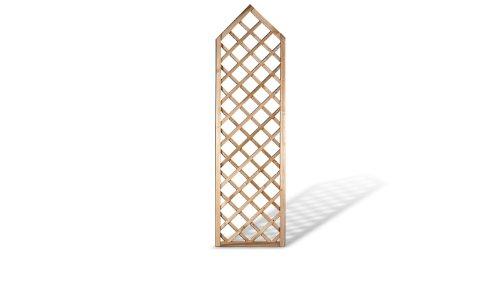 MEIN GARTEN VERSAND Modernes Sichtschutz Zaun Rankgitter Maße 60 x 210 auf 180 cm (Breite x Höhe) spitz zulaufend aus Kiefer/Fichte Holz, druckimprägniert Berlin