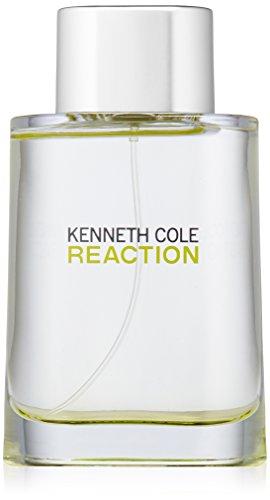 Kenneth Cole Reaction for Men 100ml EDT Spray