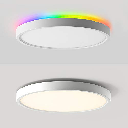 2-in-1 Smart LED Flush Mount Ceiling Light + Backlight, WiFi, Works with Alexa,Google Home,12 Inch, 24W(200W Equivalent) 2000 LM LED Ceiling Lamp Fixture for Bedroom, Living, Fully Dimmable by APP