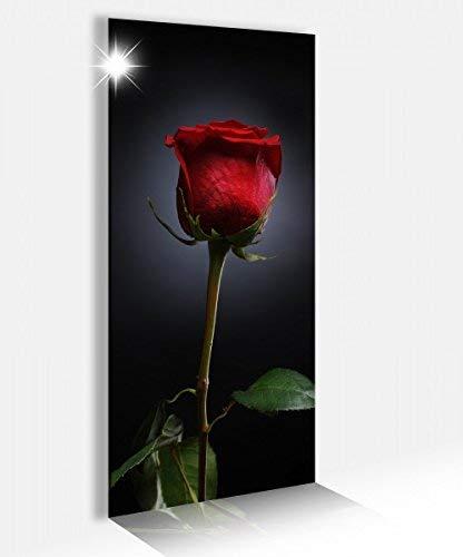 Acrylglasbild 40x100cm Rose rot Blume Liebe Valentinstag Glasbild Bilder Acrylglas Acrylglasbilder Wandbild 14B179, Acrylglas Größe2:40cmx100cm