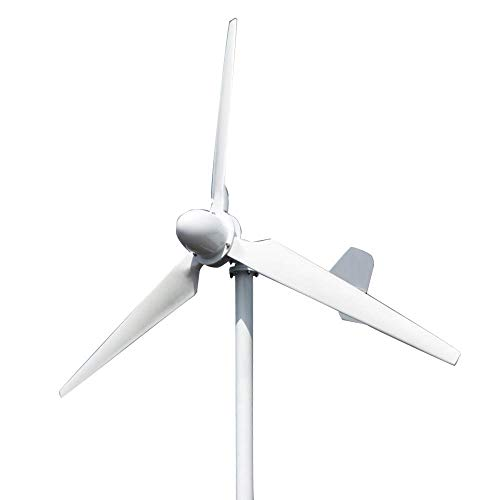 FLYT 3000W 220V Gran Turbina Eólica Generador de Viento de 3 Palas...