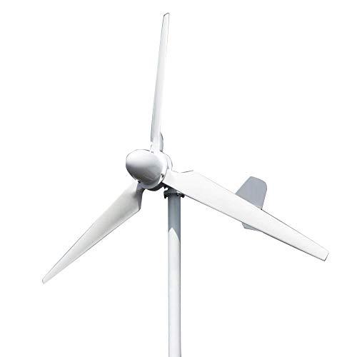 FLYT 3000W 220V Gran Turbina Eólica Generador de Viento de 3 Palas 3KW Aerogeneradores...