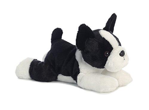 Aurora - Flopsie - 12' Boston Terrier - Buster