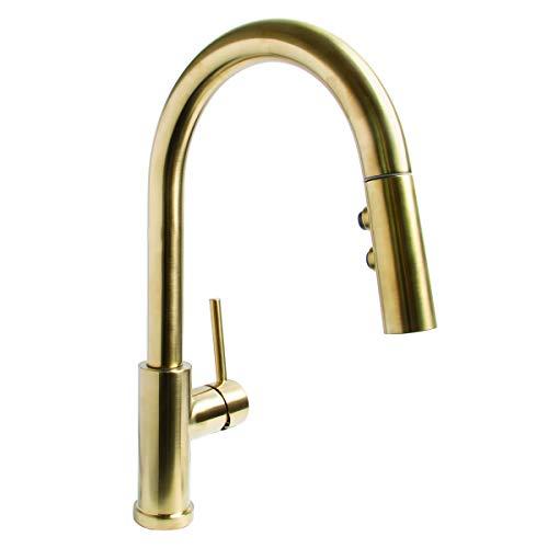 Speakman SB-1042-BRB Neo Kitchen Faucet with Pull Down Sprayer, Aged Brass