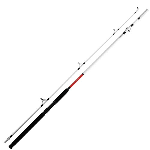 Daiwa–Sensor Canne à pêche, Couleur,...