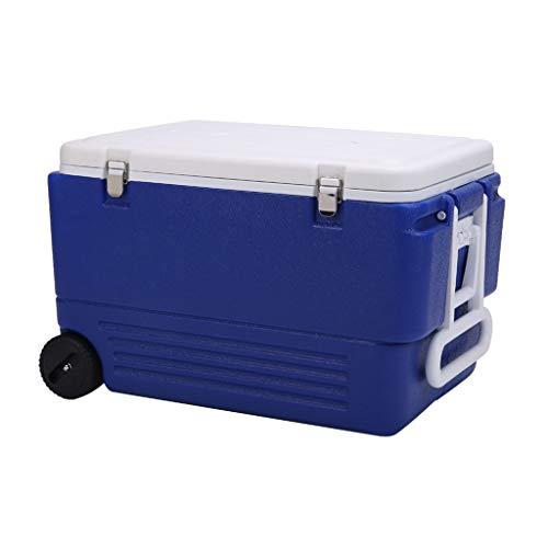 LIYANLCX Nevera portátil Nevera/congelador portátil Vehículo Compacto Mini frigorífico Refrigerador Kits de Primeros Auxilios para Camping y Viajes - 80L