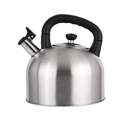 Kettle Wyf Gas-Erdgas-Kessel-304 Edelstahl-Pfeifen-Haushalts-große Kapazitäts-Küche verdickte Heißwasser-Flasche (Color : Silver, Size : 6L)