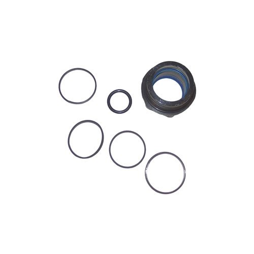 Affordable Western Plow Part # 44342 - Seal Kit for 1-3/4 in. Double Acting Ram