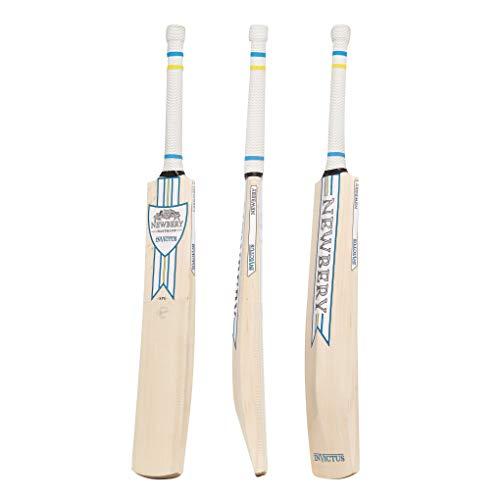 Newbery Cricket Unisex, Jugendliche Invictus Kricket-Schläger, blau/gelb, 6